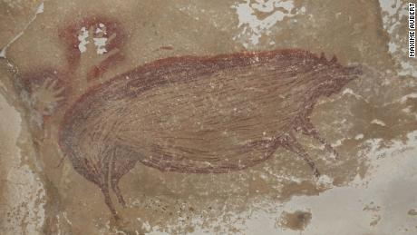 A warty pig painted on a cave wall 45,500 years ago is the world's oldest depiction of an animal