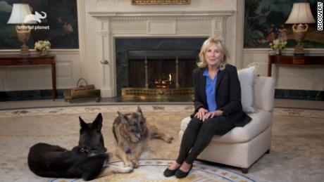 First Lady Jill Biden with first dogs Champ and Major.