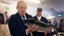 Boris Johnson's visit to a fish processing plant in the English county of Suffolk was a key event in his campaign for Brexit.