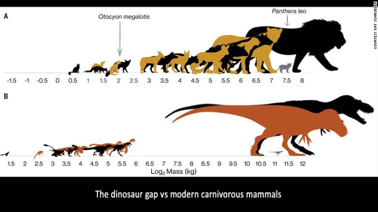 Hungry teenage tyrants help explain puzzling fact about dinosaur diversity