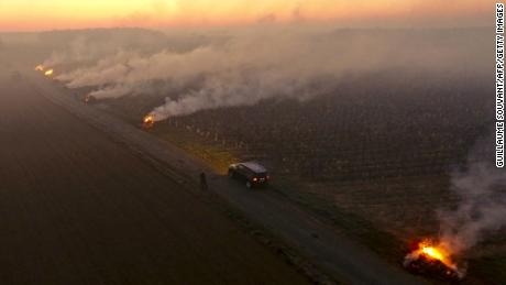 At dawn on April 7, smoke rises from fires lit in the Loire Valley's Vouvray vineyard to protect them from frost.
