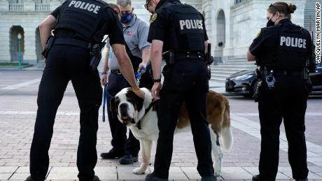 """US Capitol Police officers pet official police comfort dog Officer Clarence as they wait for the casket of slain U.S. Capitol Police officer William """"Billy"""" Evans to leave the Capitol after he was lying in honor at the Capitol in April."""
