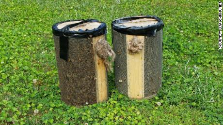There were two containers full of the bees after Georgia Bee Removal took care of the insects.