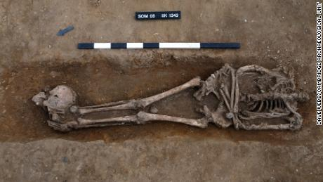 کٹی ہوئی لاشوں اور شکار دفنوں کی تعداد & quot؛ غیر معمولی حد تک & quot؛  برطانیہ کے دوسرے رومن قبرستانوں کے ساتھ موازنہ۔