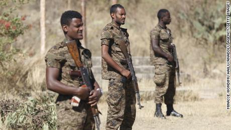 Правительство Эфиопии защищает действия в районе Тыграя, обвиняет критиков в «организованном нападении»