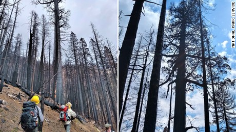 Photos from the National Park Service show the impact of the fires.