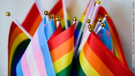 LGBTQ+ अमेरिकियों की सरकार द्वारा पूरी तरह से गणना नहीं की जाती है।  यह एक बड़ी समस्या है