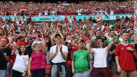 Supporters cheer during the match between Hungary and Portugal.