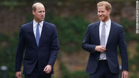 William and Harry are working together again