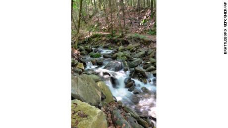Негритянский ручей в штате Вермонт протекает через государственный парк Тауншенд.  Поток находится в процессе переименования.