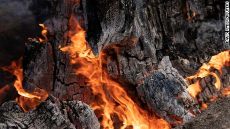 A stump burns in an area hit hard by the Bootleg Fire near Bly, Oregon