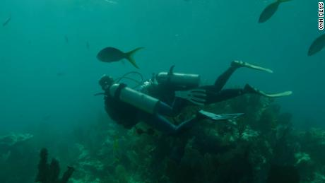"""""""Lessons from the Water"""" followed Black scuba divers as they performed fieldwork."""