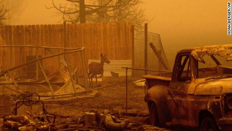 Thousands of California residents are ordered to evacuate as the Dixie Fire nears 500,000 acres