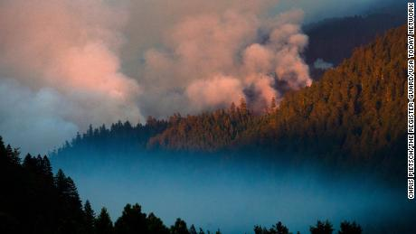 Smoke plumes rise from the Kwis Fire near Eugene, Oregon, on August 10, 2021.