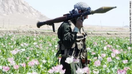 An Afghan soldier walks through a field of poppies during an eradication campaign in Kandahar province's Maiwand district in 2005.