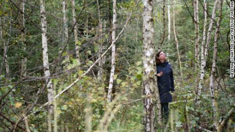 Kristina Kuethe, Peter Meyer's partner, stands in a rejuvenated forest.