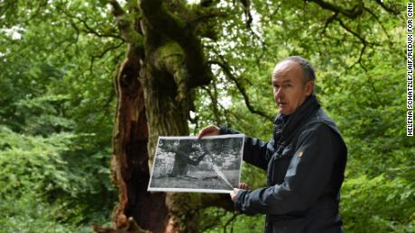 Meyer holds up a picture taken about 100 years ago of the oak tree behind him.
