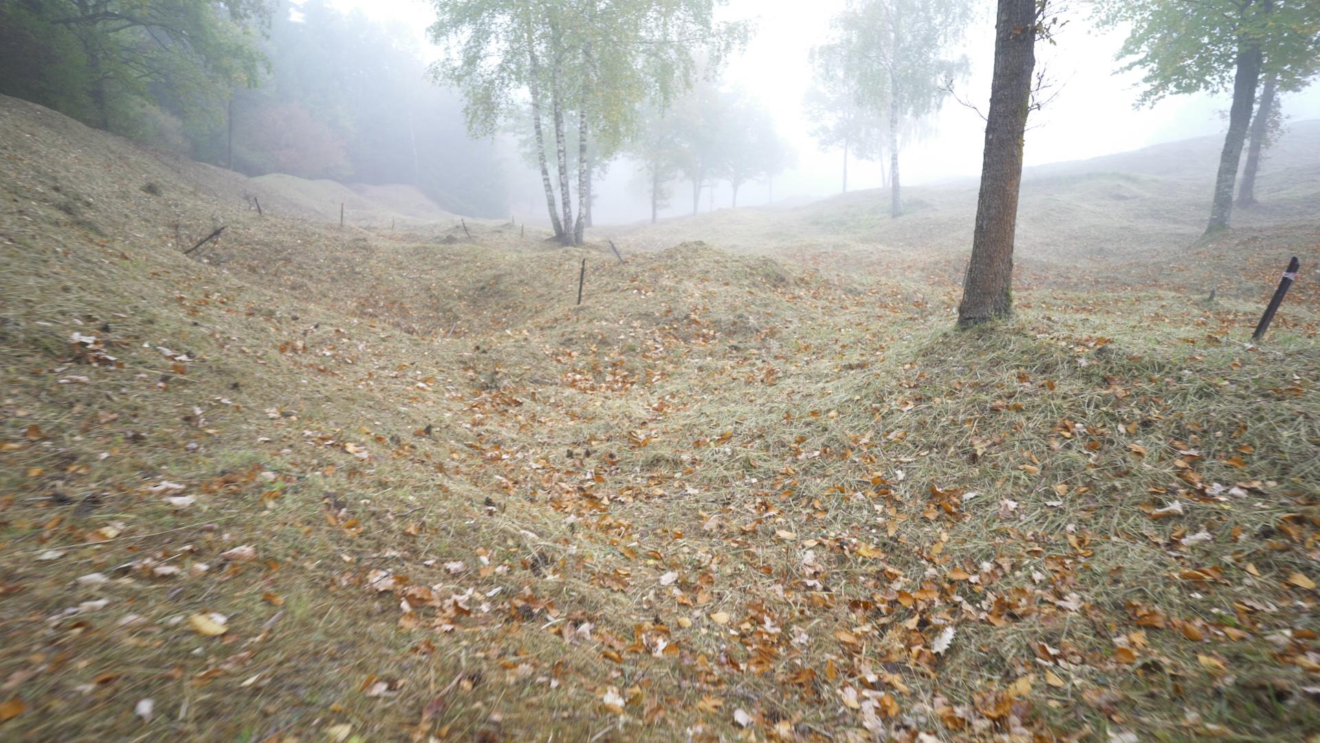 a poisoned memorial to world war i the forests of verdun cnn