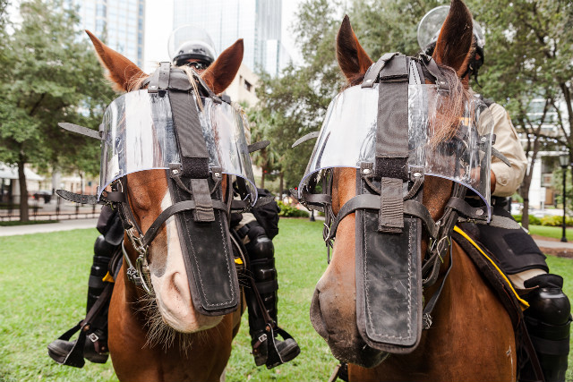 Police sit on horses on Thursday, August 30, in Tampa. - (Zoran Milich for CNN)