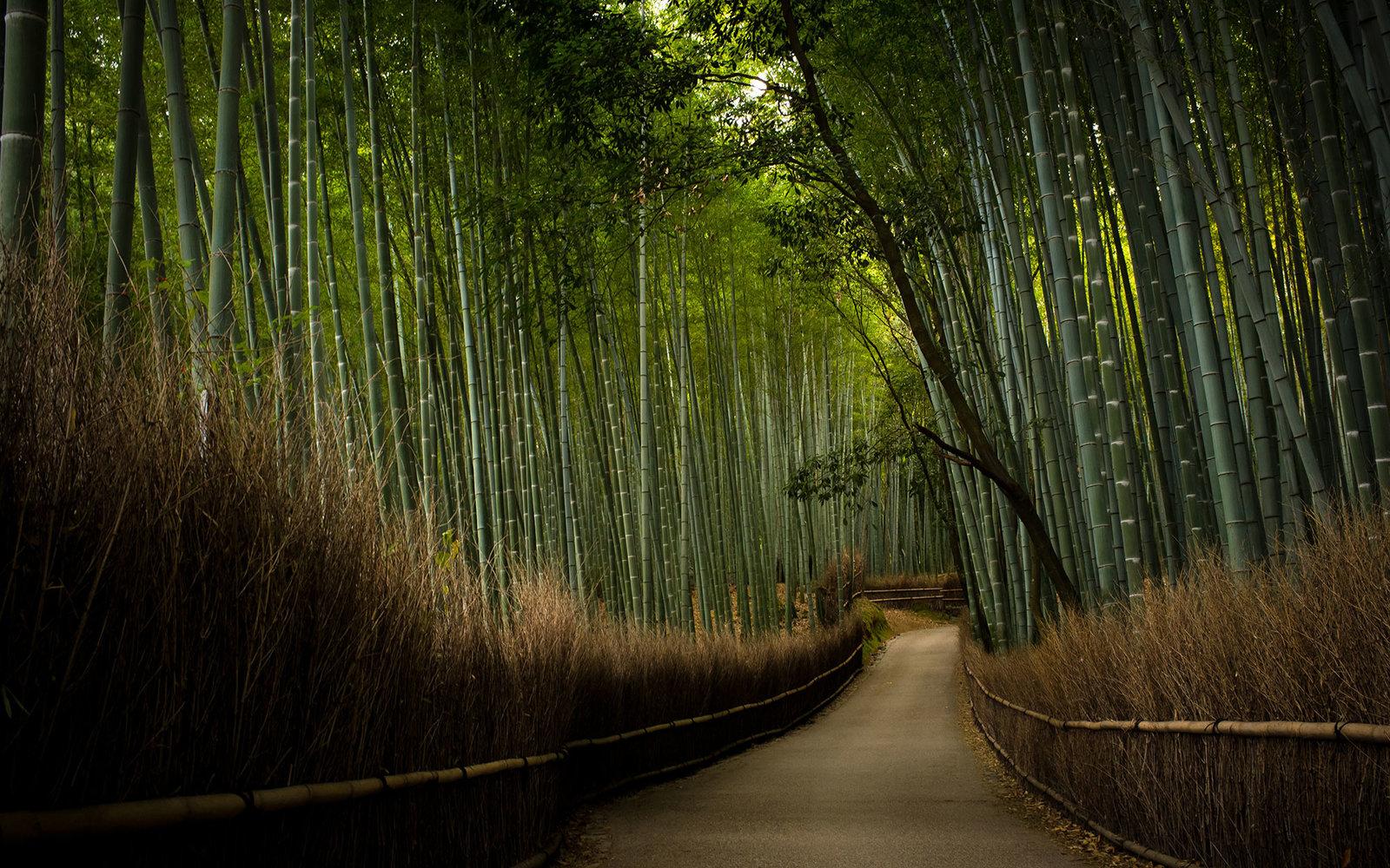 160330155701 13 Japan Temples