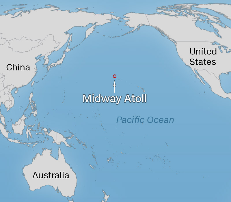 Midway Island On World Map Midway Island World Map | fysiotherapieamstelstreek