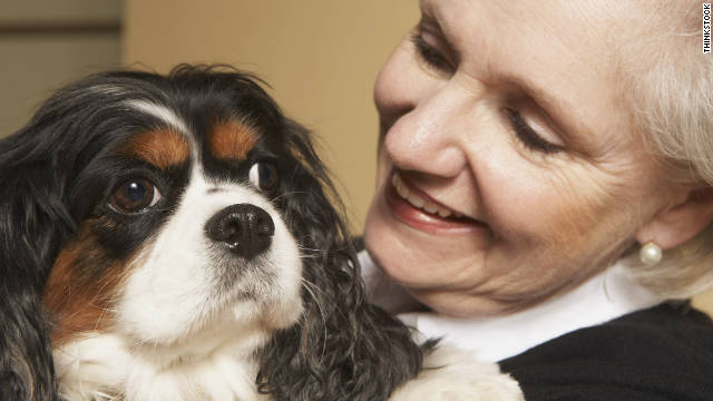 Ensure that your pet can be protected and cared for by coming up with a plan, should something happen to you.