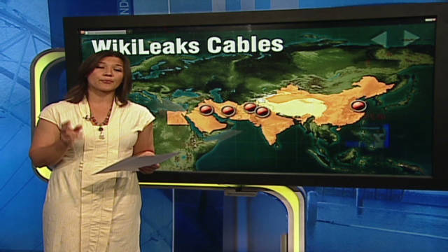 shubert wikileaks us cables_00022223