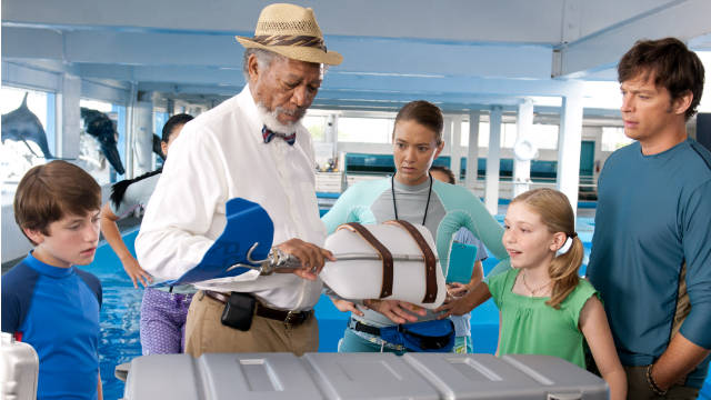 """Dolphin Tale"" is the kind of constantly uplifting heart-warmer in which even the villains are congenial."