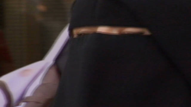 Fighting France's 'burqa ban'