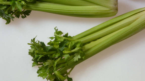 Authorities shut down a processing plant in Texas in October 2010 after four deaths were tied to listeria-infected celery produced at the site. The Texas Department of State Health Services ordered SanGar Fresh Cut Produce to recall all products shipped from its San Antonio plant.