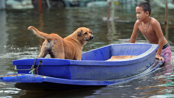 A Thai boy pushes a boat with his dog in floodwaters in suburban Bangkok, on October 11, 2011.