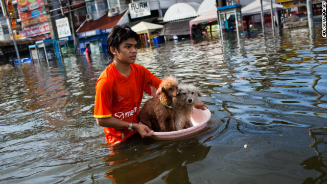 A Thai resident floats his pets down stream as he makes his way through the flooded streets on October 22 in Pathum Thani on the outskirts of Bangkok, Thailand.