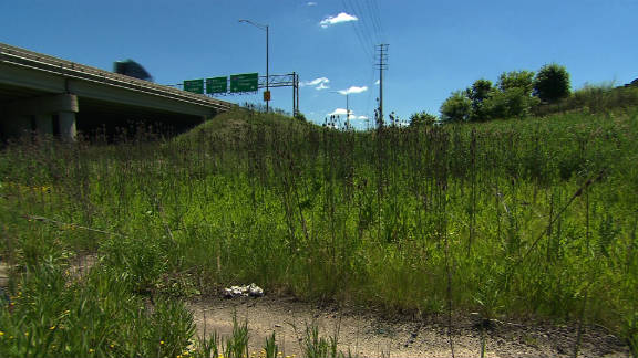 A grassy strip between expressways links two halves of Chicago