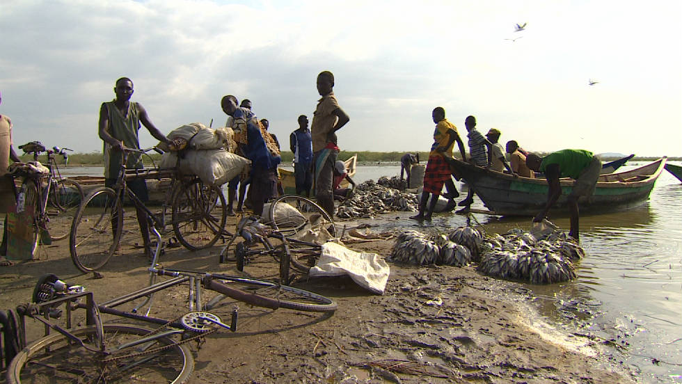 Fishermen bringing in their catch from Lake Turkana, the largest permanent desert lake in the world.