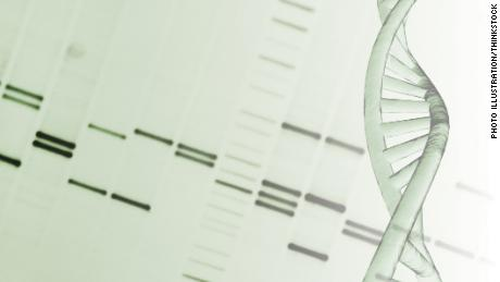 DNA helix and genetic mapping