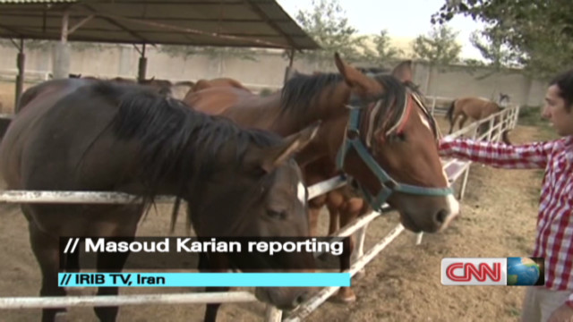 exp world view persian horses iran_00002701