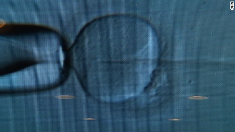 More than 2,000 frozen eggs and embryos may not be viable after freezer fails
