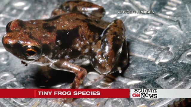 STEM stories on CNN Student News - CNN