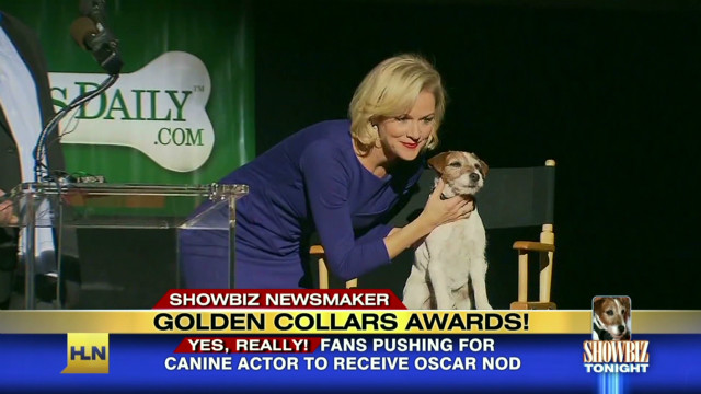 Award show goes to the dogs