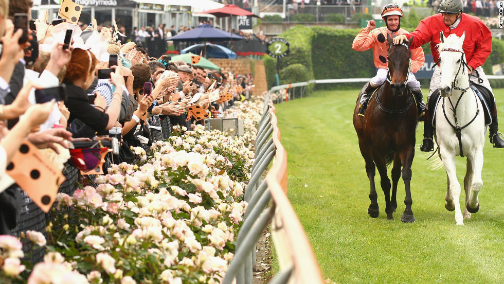 Black Caviar has taken Australia by storm, with fans flocking to watch her races and even dressing in her salmon and black racing colors.