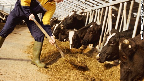 Pediatricians want farmers to use fewer antibiotics