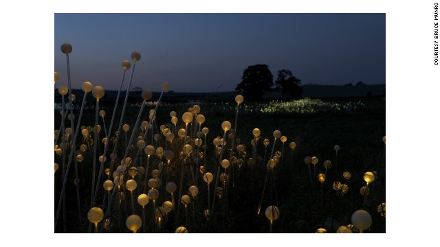 'Field of Light' encourages onlookers to cherish the landscape says British lighting designer Bruce Munro