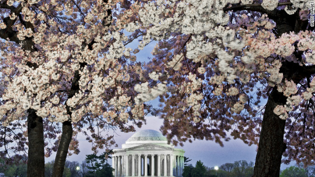 The Jefferson Memorial, framed by cherry blossoms, reminds us to keep updating our institutions, says LZ  Granderson.