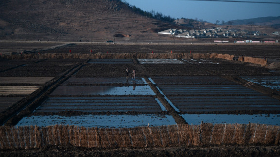 North Korean women are seen from the window of the train as they work on a paddy field, April 8, 2012.