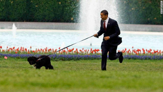 President Barack Obama runs with family dog Bo on the south lawn of the White House on  April 14, 2009.