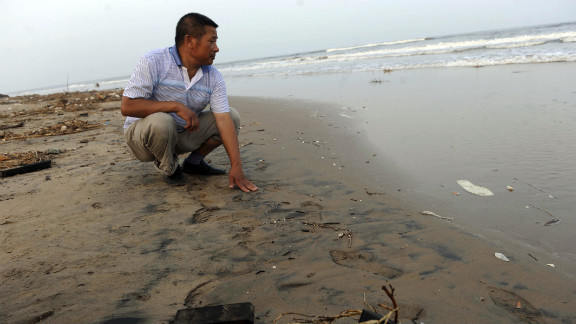 A Chinese official inspects a beach in northern China