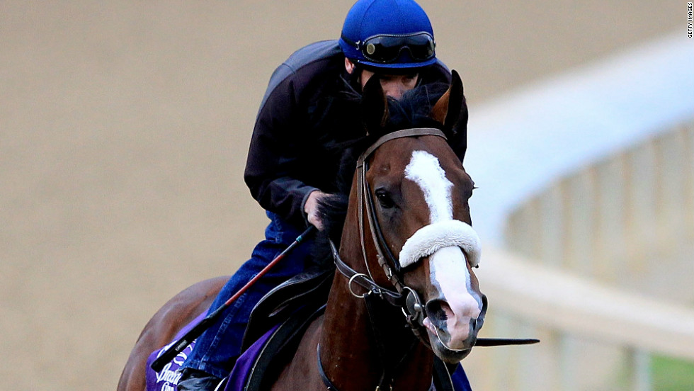 "Union Rags has already had some success at Churchill Downs, finishing second in the Breeders' Cup Juvenile there in 2011. The colt was also third at the Florida Derby in March. ""He's big, he's strong, he's fast -- so far I haven't found any faults in him. I think he's got a good chance,"" trainer Michael Matz said."