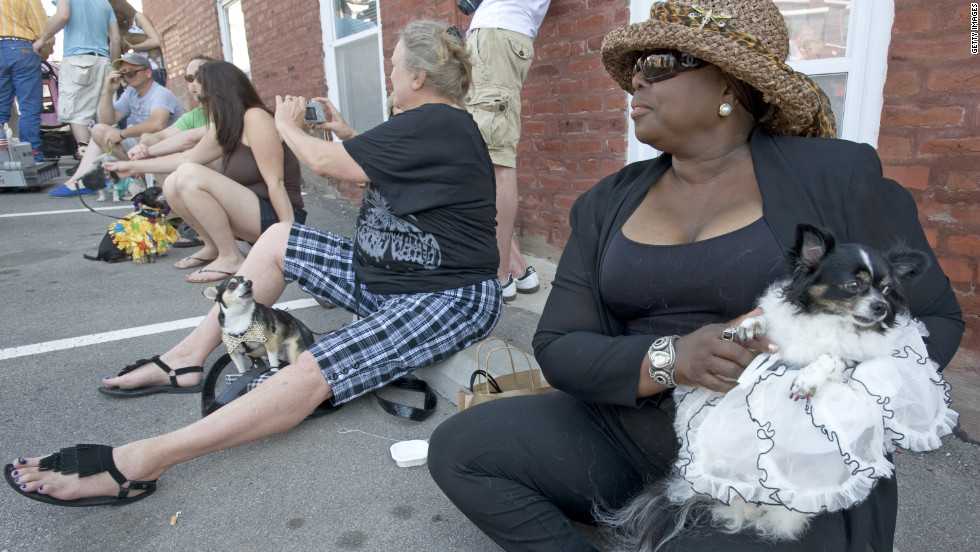 Lenor Wuattoux, from Kansas City, and Consuella, her Chihuahua. wait in the shade for the Chiuahua Parade.