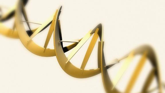 In April 2003, scientists announced they had completed a draft sequencing of the human genome, or all the genes that make up our DNA. This established the order of the more than 3 billion letters in what