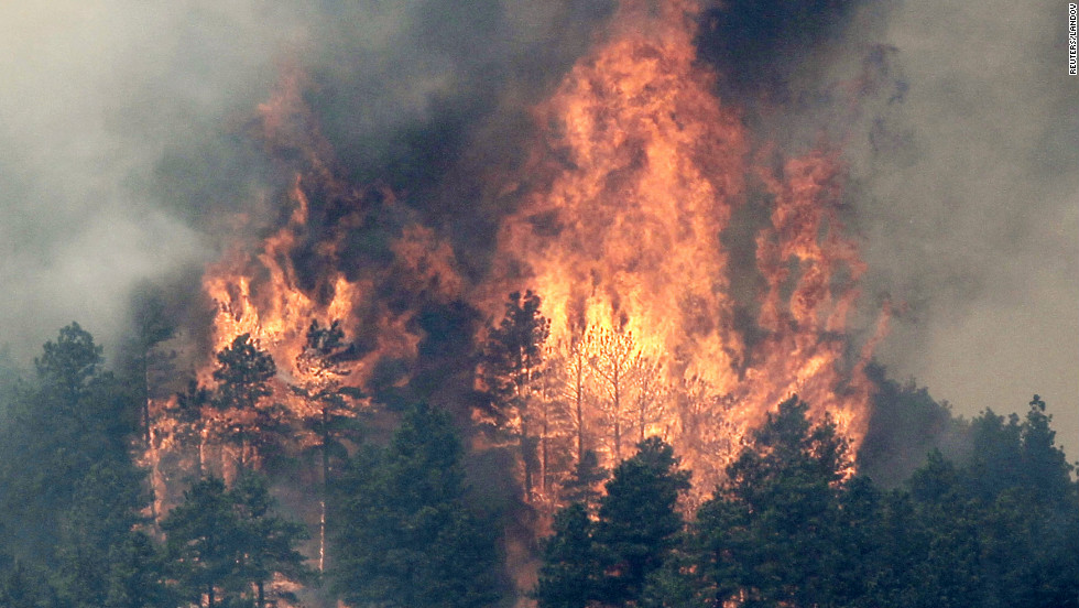 Colorado's High Park Fire engulfs trees in flames near Fort Collins on Monday, June 11.